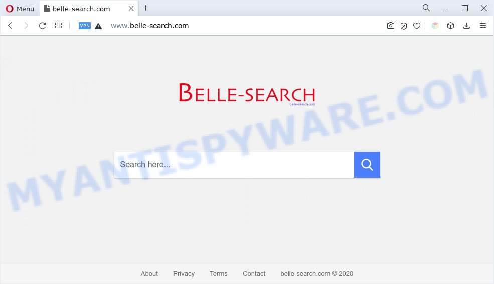 Belle Search