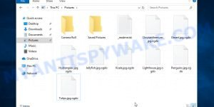 Files encrypted with .Ogdo extension