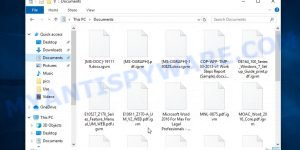 Files encrypted with .igvm extension
